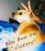 Boo Boo says 'Victory!'